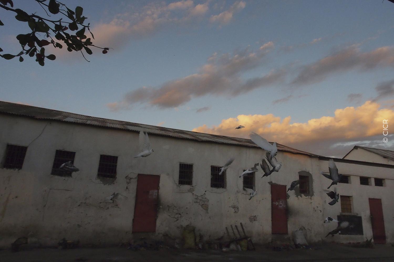 Prison-Madagascar3